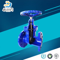 Soft Seal French Cast Iron Gate Valves Manufacturers