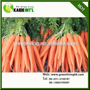 Special 75g-150g Carrot