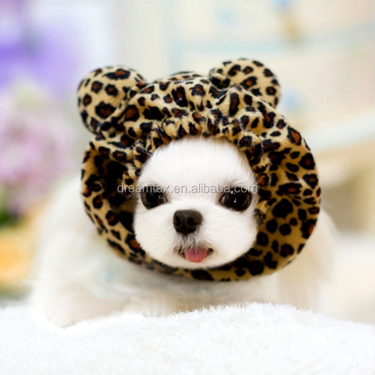 High quality wholesale cute dog cat pet cat hat