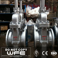 Ansi Butt Weld Forged Manual Operated Gate Valve