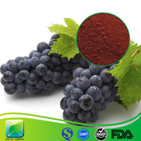 100% Organic Grape Seed Extract Powder Natural Grapefruit Seeds Extract