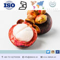 natural plant extract/mangosteen extract/dried mangosteen rind