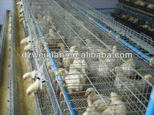 high quality multi-tier chicken cage