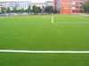 W shape artificial grass turf outdoor pitch prices