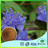 Factory supply high quality best price Common Cyanotis Root extract