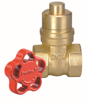 "Manufacturer 1/2"" forged brass lockable gate valve"