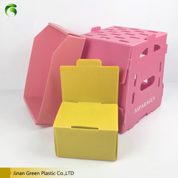 Green cheap Folding adjustable PP corflute/corrugated Plastic File Storage Box for Documents Packing/screws