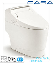 110V-220V OEM ceramic brand toilet seat with bidet
