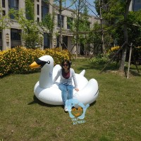 Funny inflatable swan for sale 1.9m long moq 1piece