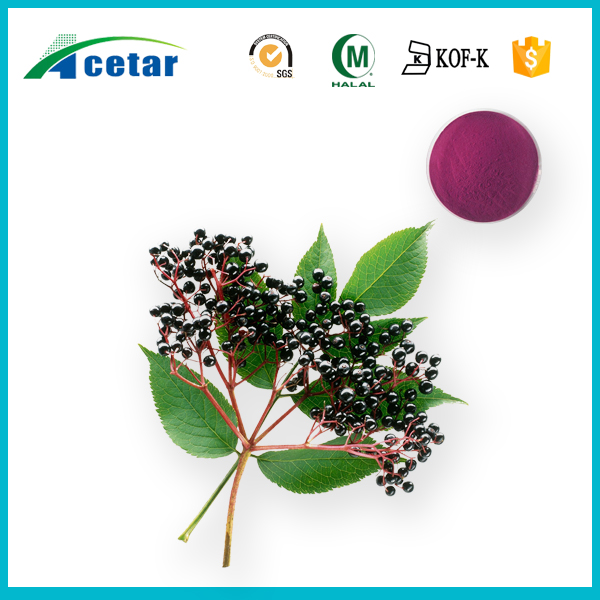 ISO certificated natural anthocyanidins supplement elderberry fruit