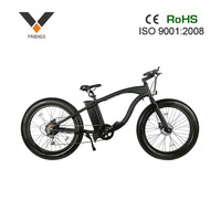 new fat tire electric bike, beach sport ebike EMX20 with lithium battery hot sale