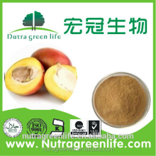 Best Price 5%-20% protein africa mango seed extract fresh fruit
