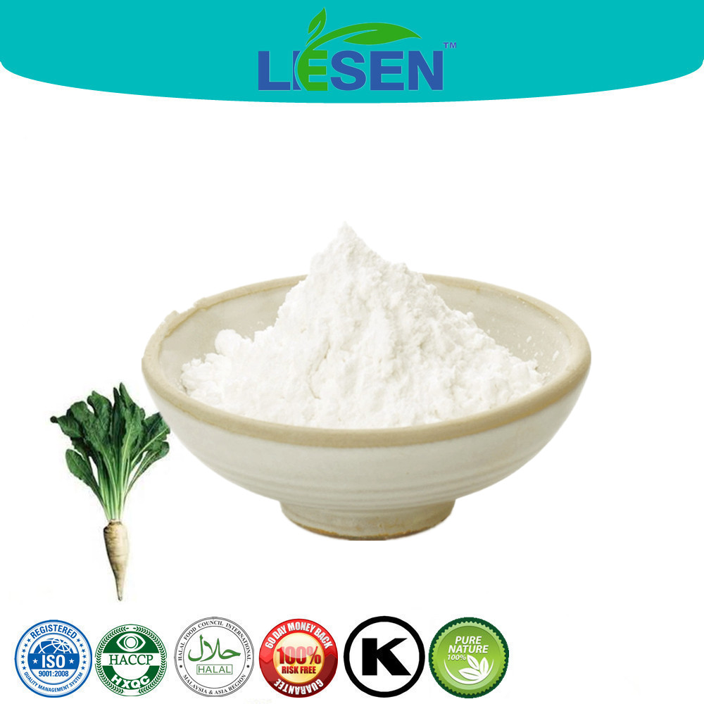 New Arrival Organic Chicory Root Extract Inulin Supplement 90% 95%