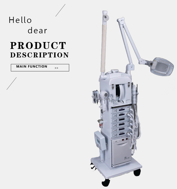 Factory direct wholesale 17 in 1 multifunctional beauty salon equipment with OEM service