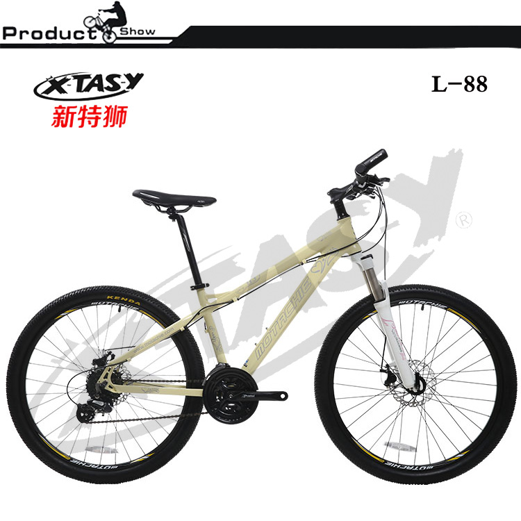 24 speeds cheap for adult steel frame mountain bicycle cycling
