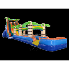 Slide slip, water slides for adults, Double Lane Tropical Slide inflatable double lane slip slide for sale