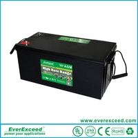 Manufacture 12v rechargeable valve regulated lead acid battery