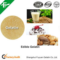 Food Beverage Gelatin Powder