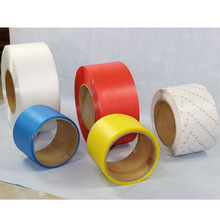 Stainless Steel and Plastic PP Packing Banding Strip
