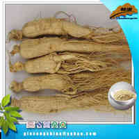 Hot sales ginseng juice wine
