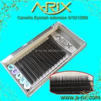 hot sale camellia eyelash, extensions eyelash,camellia lash with custoer