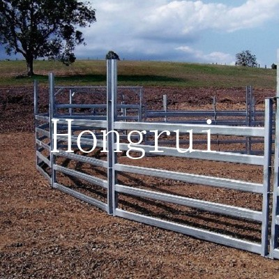 Square or oval or round tube hot dipped galvanized cattle yard panel
