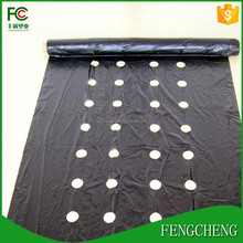 2017 hot black plastic mulch film/film with holes for agriculture