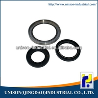 Wear resistance double lip oil seal
