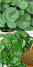 Centella asiatica extract HPLC