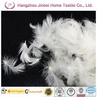 2-4CM WASHED WHITE DUCK FEATHER FOR SELLING!