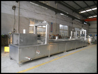 Automatic continuous frying machine for chips