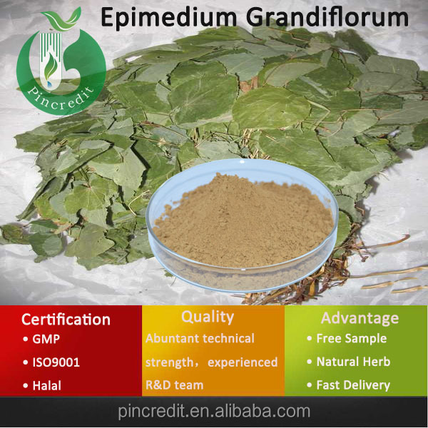Epimedium Extract 98% Icariin/Epimedium P.E Powder/Epimedium Grandiflorum