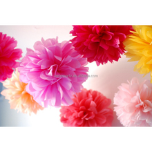 Party Decoration Popular Paper Decoration Kits Giant Paper Flowers