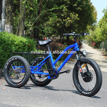 Factory directly sell electric three wheeler tricycle wheel bicycle cargo