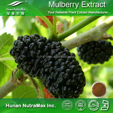 GMP Factory Natural Pharmaceutical Raw Material Mulberry Leaf Extract Mulberry Fruit Extract Powder