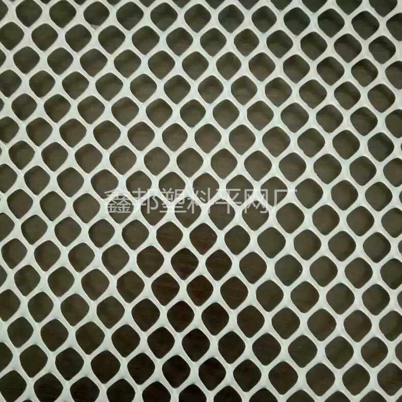 chicken mesh HDPE plastic net for agriculture