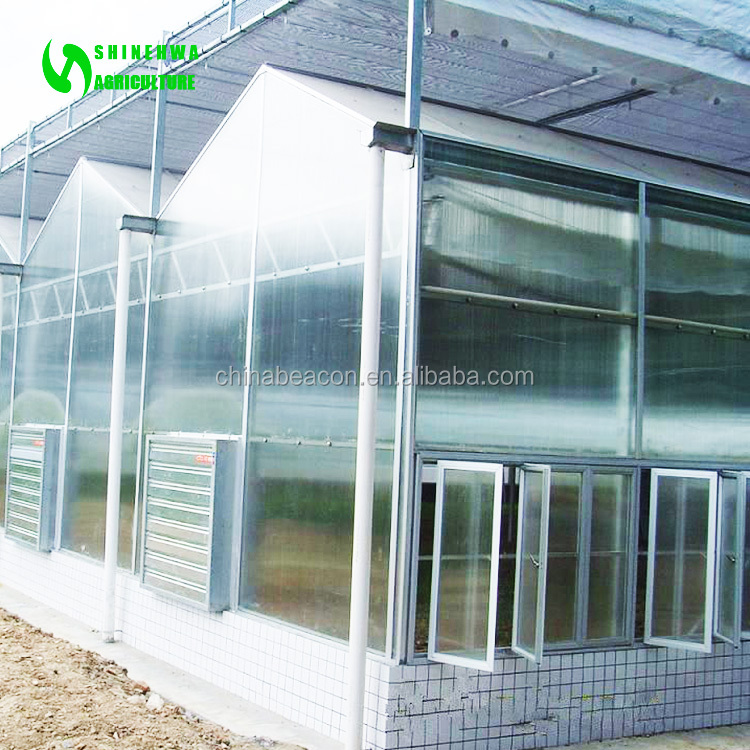 PC Sheet / Polycarbonate sheet Greenhouse for Modern organic agriculture