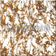 Laminated Grass Interior Doors Houses