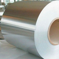 aisi 304 coil steel