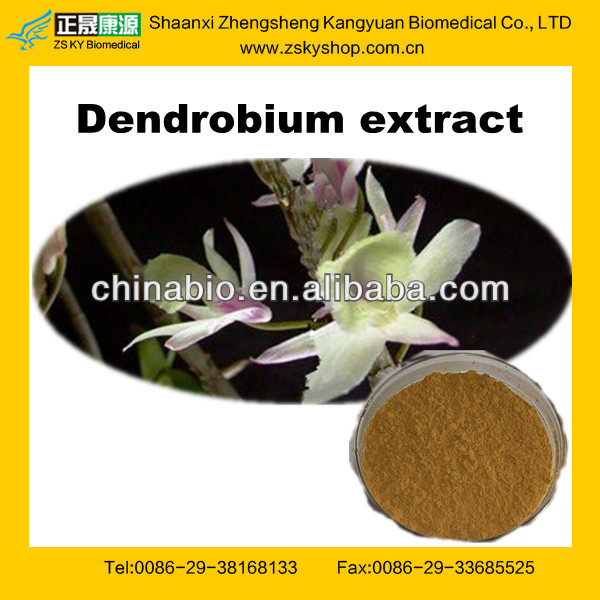 Dendrobium Extract Powder from GMP Certified Manufacturer