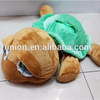 plush soft toy stuffed Tortoise , Dressed big eyes tortoise