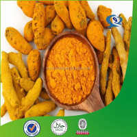 curcumin longa solvent extraction plants