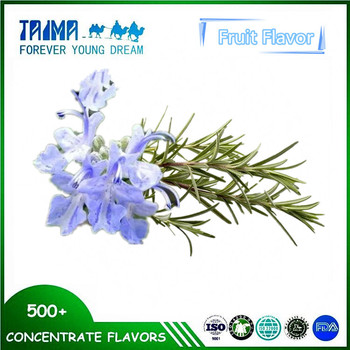 Rosemary essential oil for incense stick Rosemary essence