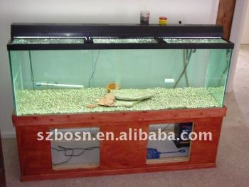 Large Acrylic Fish Tank for viewing
