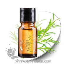 Green Herb Oil /Rosemary Edible Oil for For Daily Use