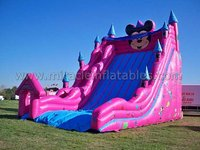 China inflatable slide,inflatable castle slide,giant inflatable slide for sale M4008