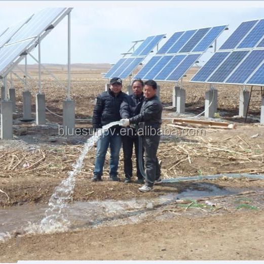 bluesun China Top 1 cheap solar water pump system 1kw 2kw 10kw 20kw 30kw price