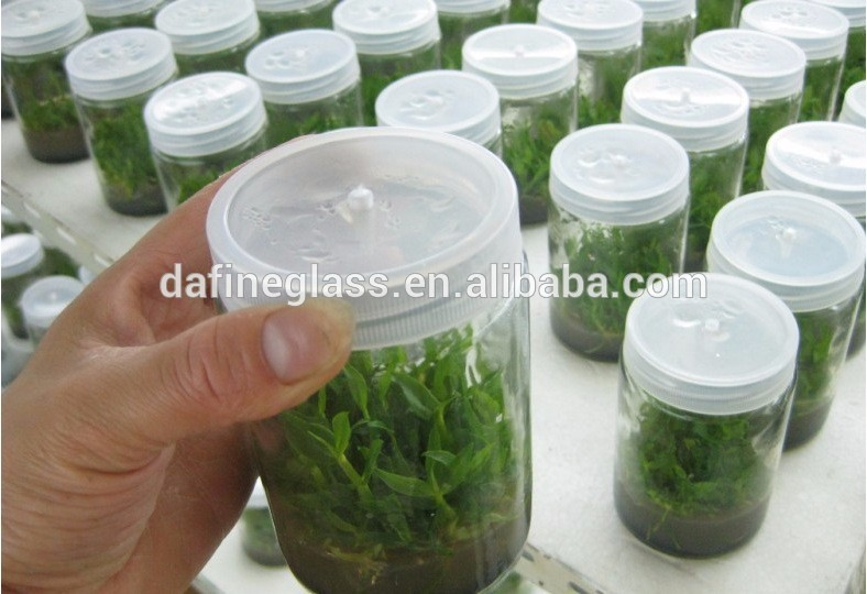 350 ml clear round orchids tissue culture glass bottle with plastic caps factory supply
