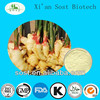 Chinese Herbal Medicine Plant Extract Ginger Powder Price