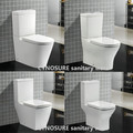 Sanitary Ware Two Piece Toilet